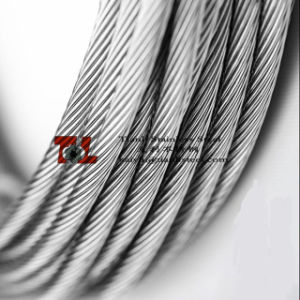 304 1X19 Stainless Steel Wire Rope pictures & photos
