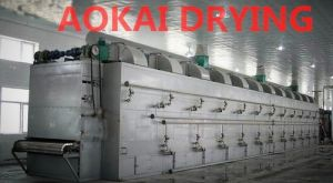 Vegetable and Fruit Dryer Machine pictures & photos