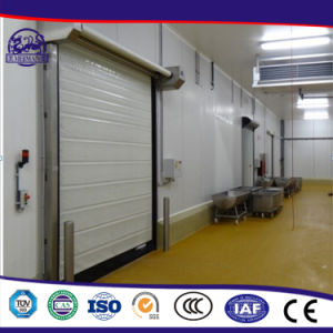 Chinese Supplier Energy-Efficient Automatic PVC Fast Doors & Chinese Supplier Energy-Efficient Automatic PVC Fast Doors - China ... pezcame.com