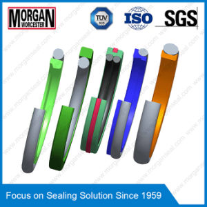 High Quality PU Seal/O Ring/Oil Seal/Rubber Seal pictures & photos