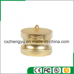 Brass Camlock Couplings/Quick Couplings (Type-DP) pictures & photos