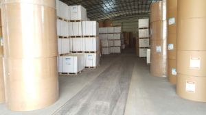 Gold and Silver Cardboard Paper & Specialty Paper pictures & photos