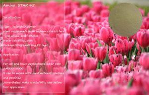 Organic Fertilizer 45% Amino Acid pictures & photos