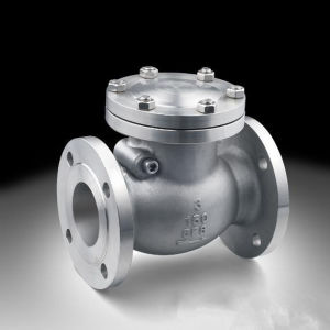 Ss304/Ss316 Swing Check Valve with Flange End (H44) pictures & photos