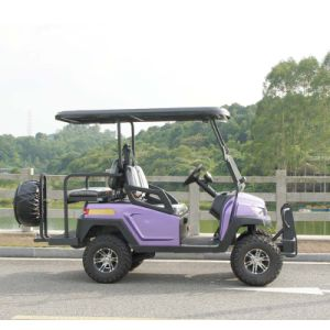 4 Wheels Golf Product Electric Golf Cart with Rear Seat pictures & photos