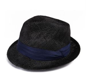 Black Raffia Fedora Hat pictures & photos
