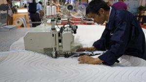Mattress Making Machine for Mattress Zipper Sewing Machine pictures & photos