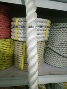 Low Price Good Quality PP Rope pictures & photos