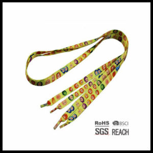 Running Cool Colored Shoe Laces Design with Various Pattern and Solid Colors pictures & photos
