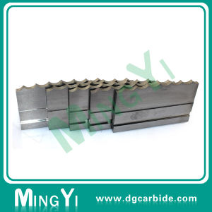 Custom Various Tungsten Carbide Wear Plate for Mold Part pictures & photos