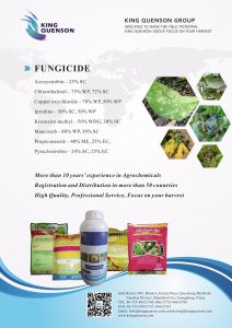 King Quenson Manufacturer Direct Factory Price Products List Fungicide pictures & photos