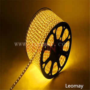 Waterproof High Voltage 110V-220V SMD5050 LED Strip with CE Listed pictures & photos