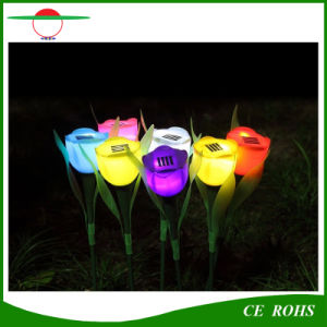 Solar Lamp Outdoor Powered Colorful Flower Tulip LED Garden Light Decorative Pathway Solar Lawn Lights pictures & photos