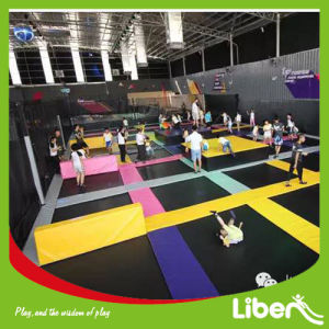 Indoor Large Cheap Adults Professional Bungee Trampoline Park for Sale pictures & photos