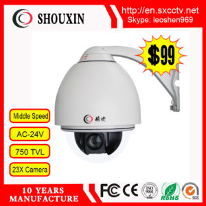 Low Cost Outdoor Low Speed Dome Camera (WL-LO) pictures & photos