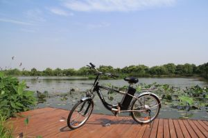 Electric Mountain Bicycle with Lithium Battery pictures & photos