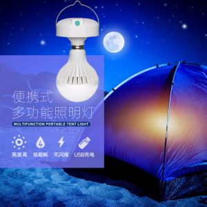Eco-Friendly Portable Solar Lantern Charge PAL LED Light Multifunctional Rechargeable Solar Camping Light (Bwei-L1002) pictures & photos