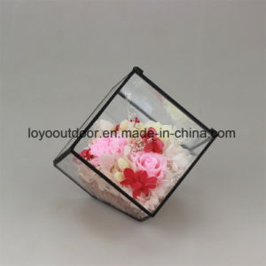 Good Quality Preserved Roses Big Size in Glass Preserved Fresh Flowers pictures & photos
