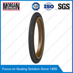 Oms-Mr/Od Profile NBR/FKM/PTFE Hydraulic Cylinder Rod Seals pictures & photos