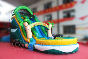 Guangzhou Tropical Inflatable Water Slide with Pool (CHSL250S-1) pictures & photos