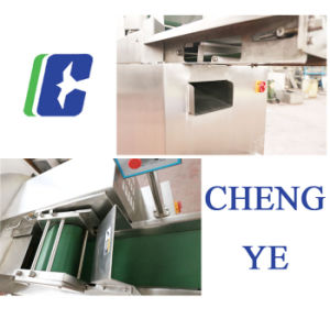 Vegetable Cutter/Cutting Machine CE Certification 3.3kw pictures & photos
