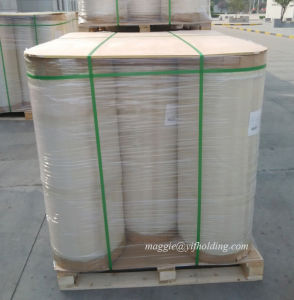 BOPP Pearlized Film with Heat Sealable pictures & photos