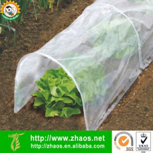 Eco-Friendly Plastic Film Small Greenhouse Grow Tunnel for Gardening pictures & photos