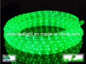 LED Rope Light (VS-2D-G)