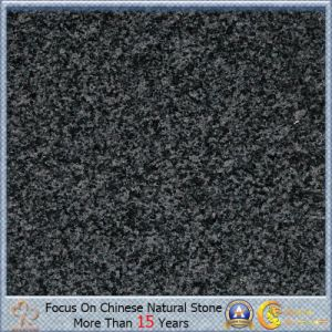 Cheap G654 Padang Dark Granite with Slab or Tombstone