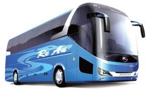 Bus (12)