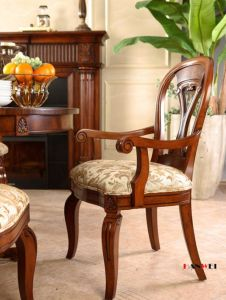 Living Room Furniture Dining Chair pictures & photos