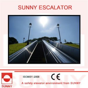 Durable Stainless Steel Panel Escalator with Anti-Lip Grooves, Sn-Es-D010 pictures & photos