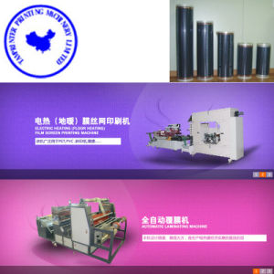 Tam-Zf Pet Floor Electric Heating Film Roll-to-Roll Printing Machine pictures & photos