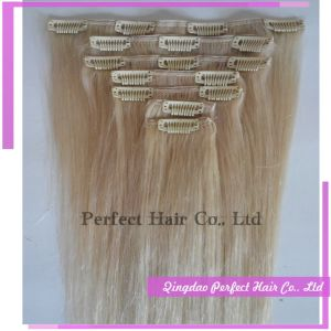 Humanities Hair Extensions Clip in on Hair Hair Piece pictures & photos