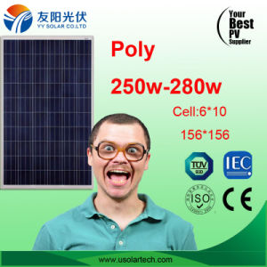 250W Cheap Quality Poly Solar Panel in Stock pictures & photos