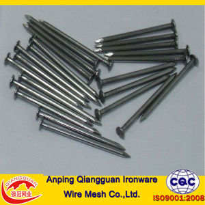 Polish or Galvanized Common Nails