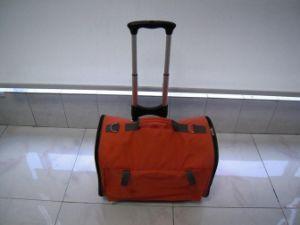 Pet Bag (L-PB327)