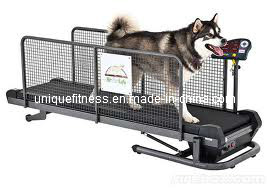 Dog Treadmill, Pet Treadmill, Running Machine Treadmill pictures & photos