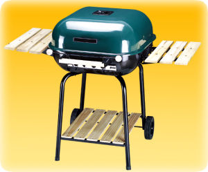 Charcoal Grill (6006)