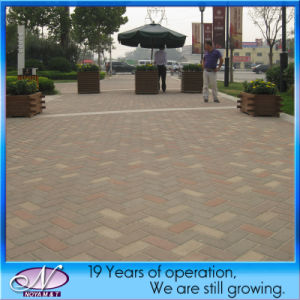 Porous Pavement, Sound Absorption Water Permeable Brick Driveway Stone Paver pictures & photos