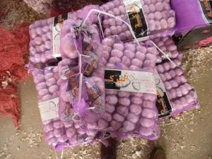 White Garlic China Origin Good Quality pictures & photos