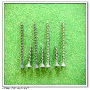 Dry Wall Screw Fin Thread (3.5, 3.8, 4.2, 4.8*19, 25, 30, ...)