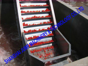 Rated Capacity Tomato Jam/Puree Production Line pictures & photos