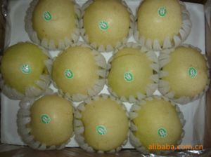 New Crop Exporting Standard Golden Pear pictures & photos