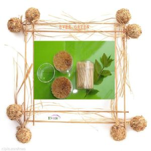 Bamboo Toothpick pictures & photos