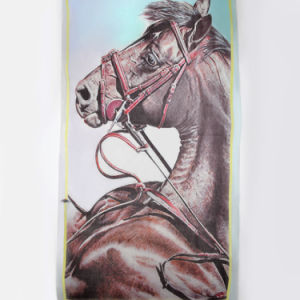 100% Cashmere Digital Printed Scarf Luxury Cashmere Shawl (14-BRHZ0101-2) pictures & photos