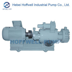CE Approved 2W. W5.5-56 Twin Screw Pump pictures & photos