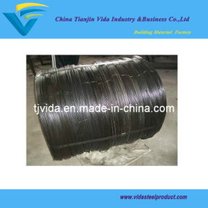 Hard Wire/Building Wire/Metal Wire pictures & photos