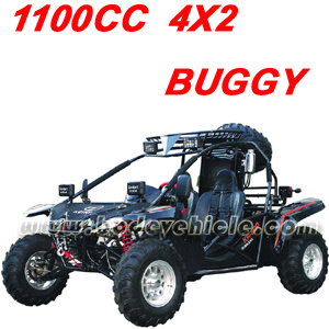 650CC. 800CC. 1100CC Go Kart. Buggy pictures & photos