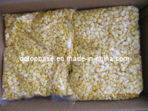 Top Quality Sweet Corn